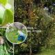 Как обрабатывать плодовый сад без химии